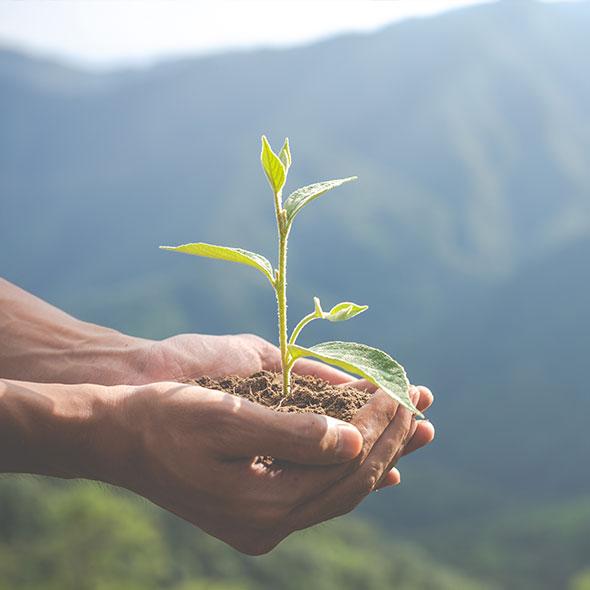 Šetrný k životnímu prostředí a zdraví